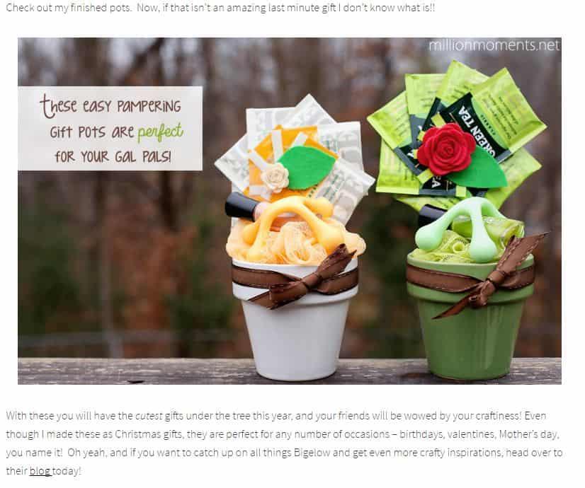 Bigelow Tea - Case studies of influencer marketing