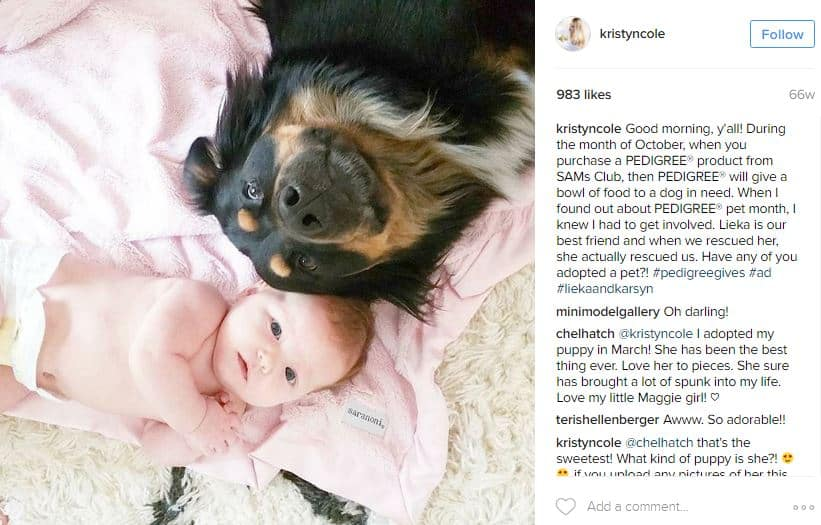 Pedigree Instagram post - Influencer marketing studies