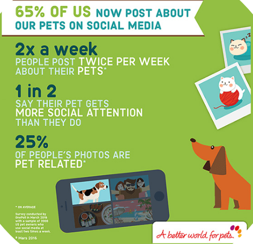 Influencer Marketing Statistics - Pets