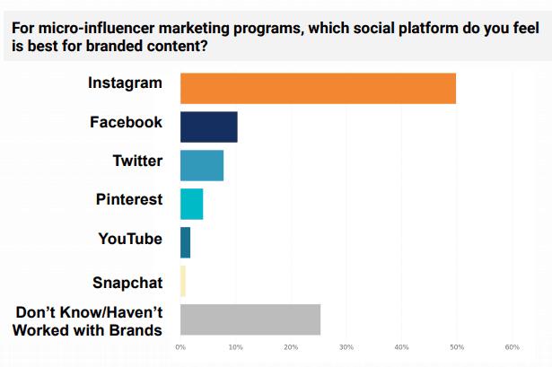 Social platforms for micro influencer marketing programs - Statistics