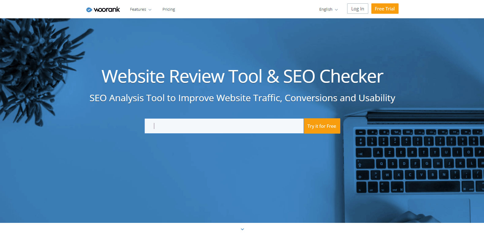 WooRank Competitor Analysis Tools