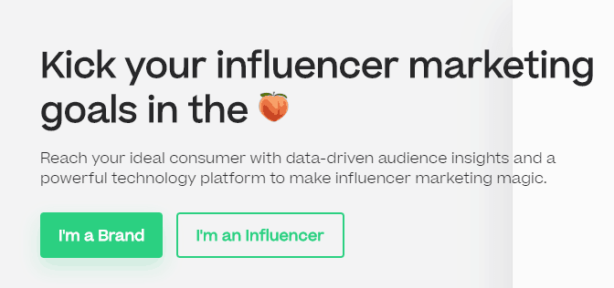 Scrunch Influencer Marketing Platforms