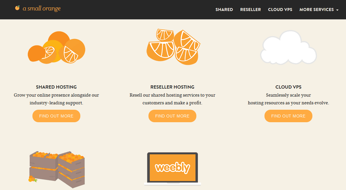 A Small Orange Web Hosting Company