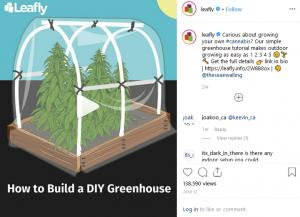 Leafly's Instagram Cannabis Marketing