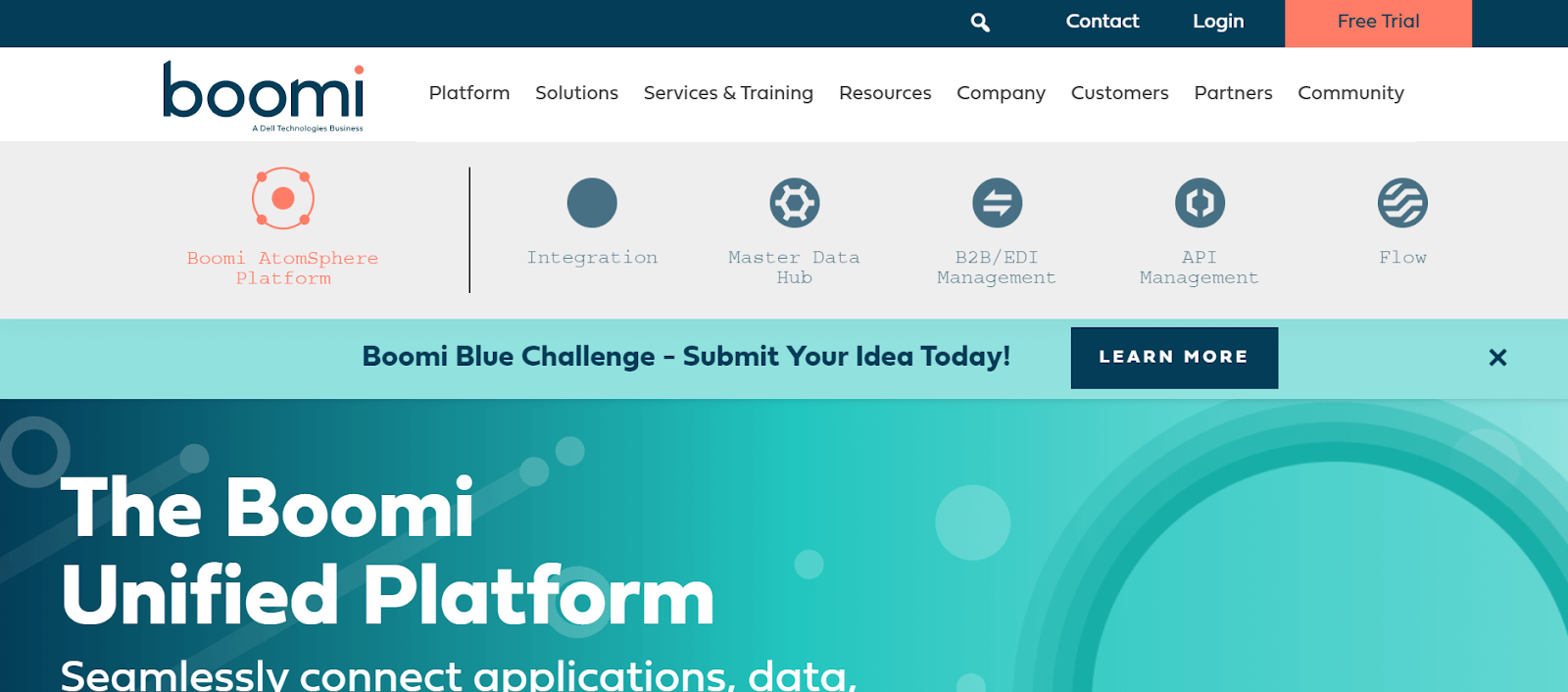 Boomi Data Management Tool