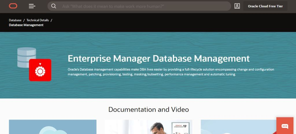 Oracle Data Management Tool
