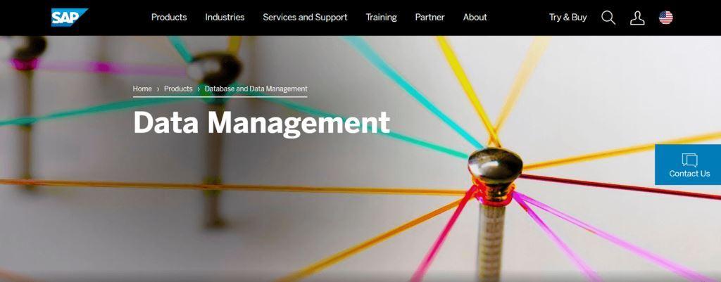 SAP Data Management Tool
