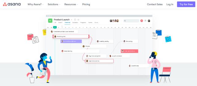 Asana Project Management Tool