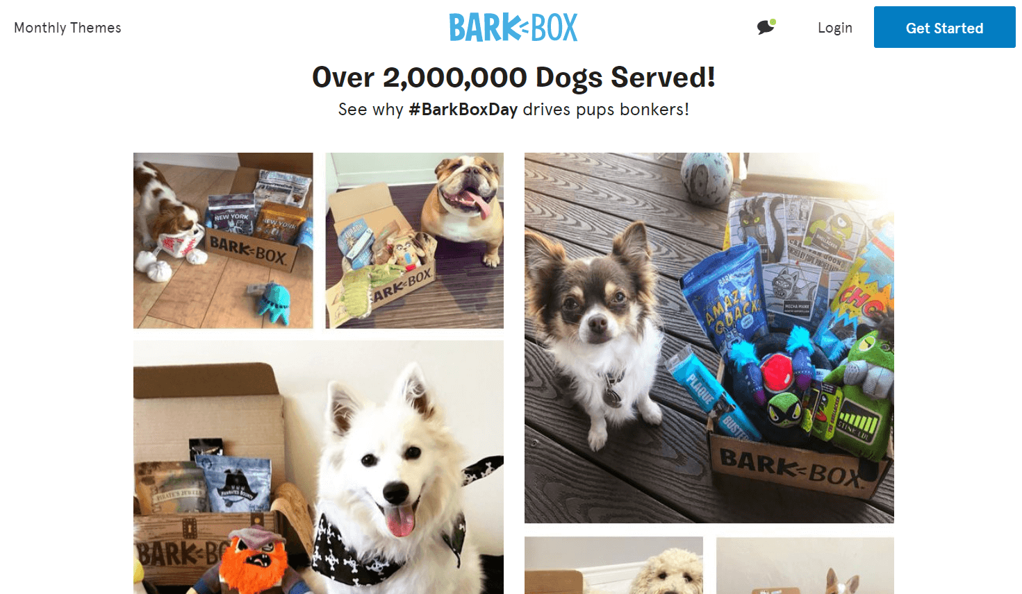 BarkBox Ecommerce Content Marketing Examples