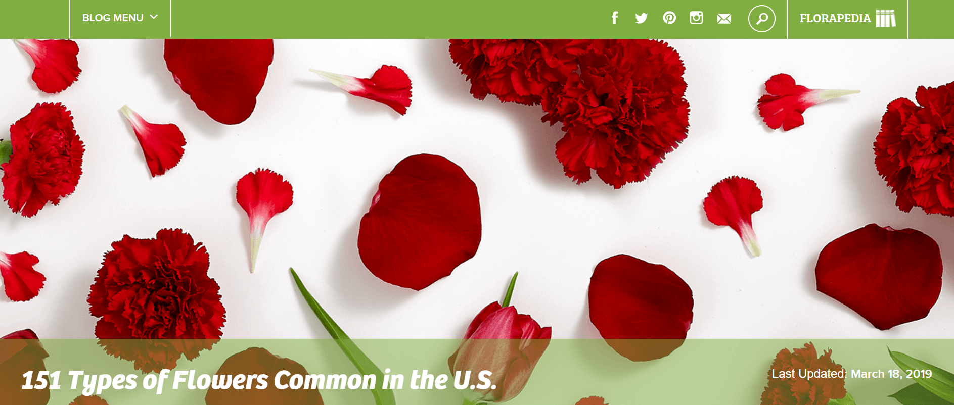 ProFlowers Ecommerce Content Marketing Examples