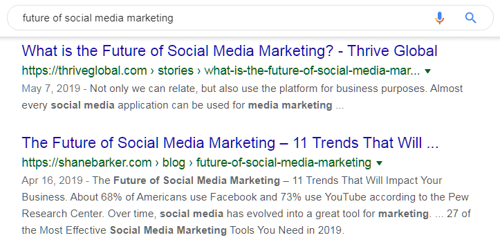 The Future of Social Media Marketing SEO keyword Case Study