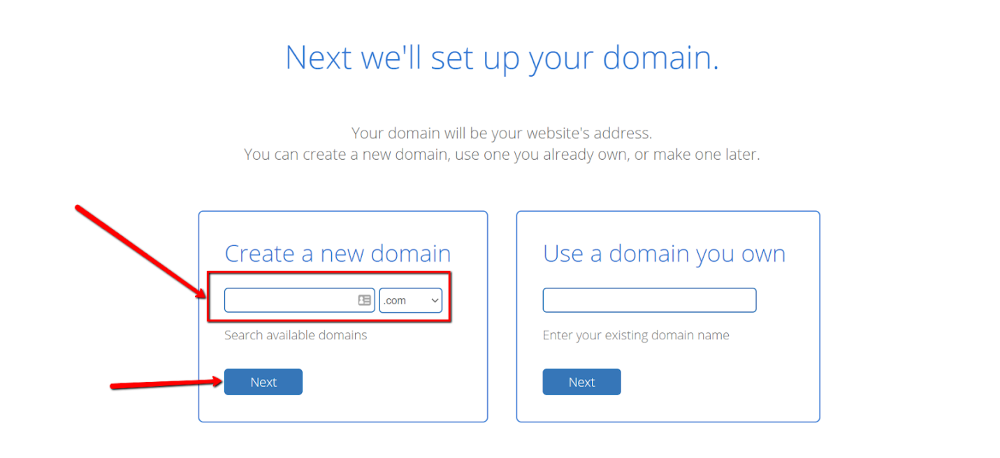Bluehost Domain Selection