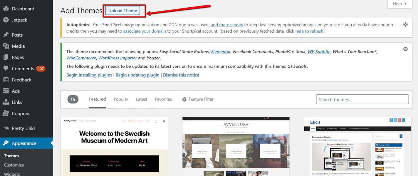 Wordpress Theme Update