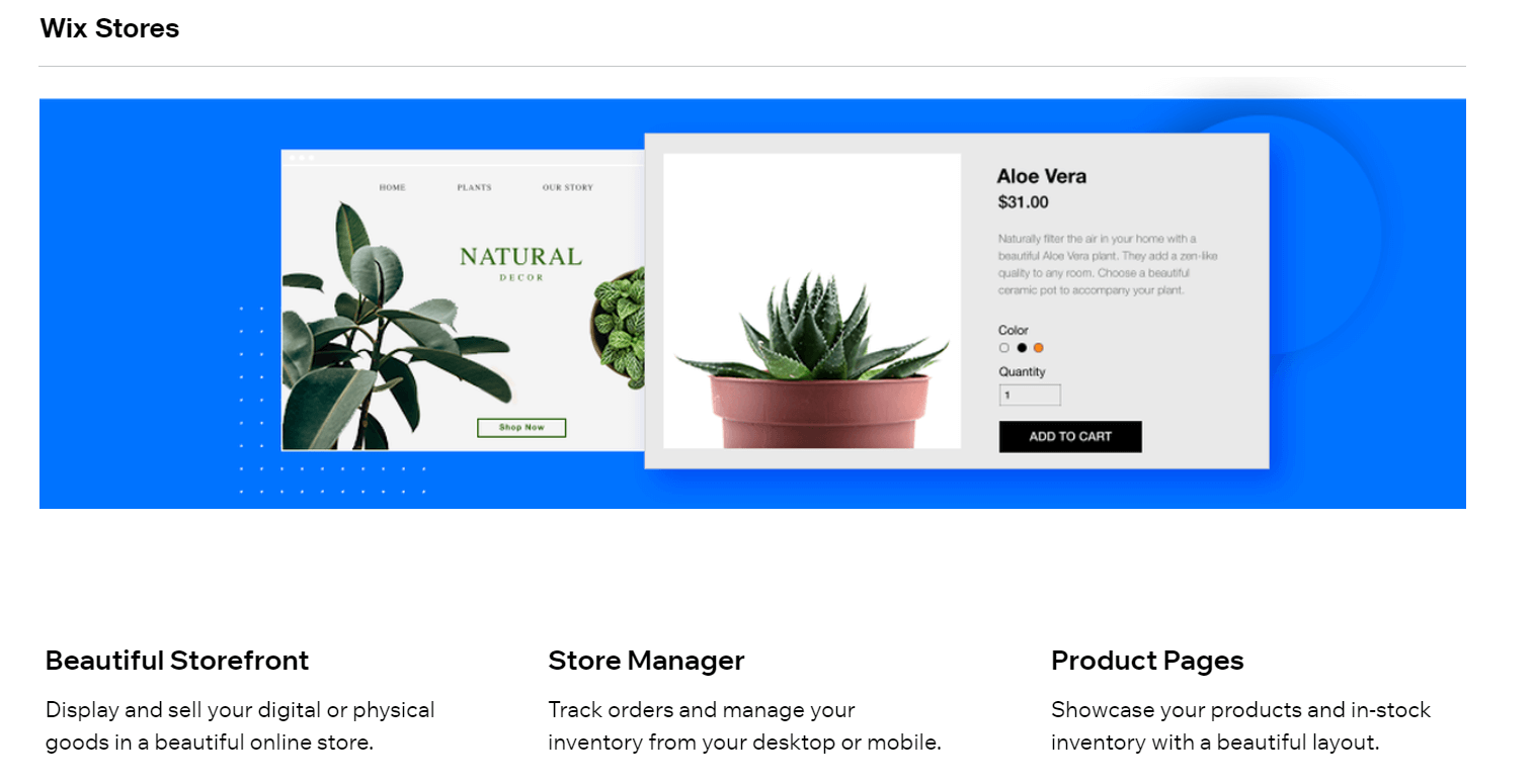 Industry-Specific Website Design Options
